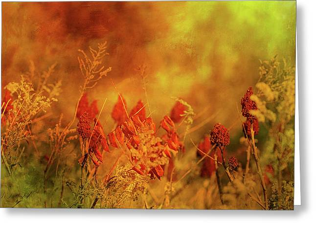 Autumn Wonders Greeting Card by Theresa Campbell