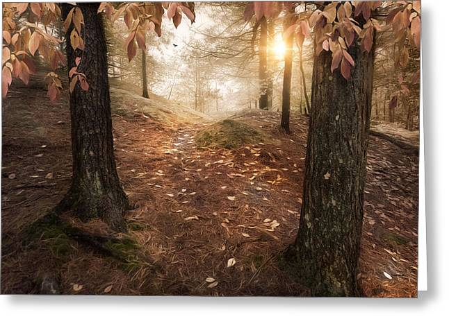 Autumn Woodland Greeting Card by Robin-Lee Vieira
