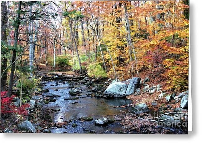 Autumn Woodlands Greeting Card