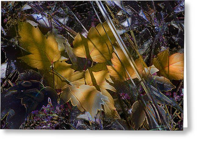 Autumn Yellow Greeting Card by Stuart Turnbull