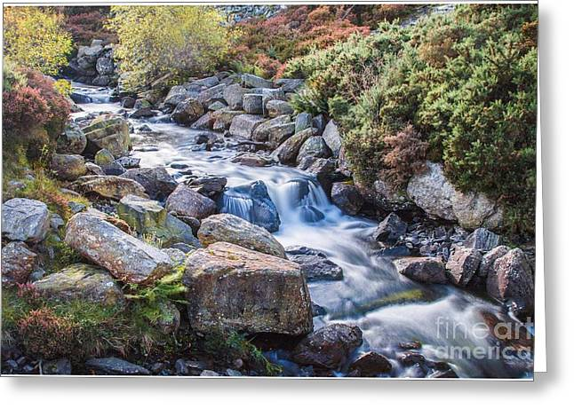 Autumnal Cascade  Greeting Card by Chris Evans