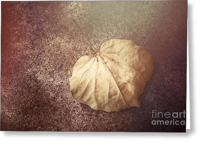 Autumnal Changes Greeting Card