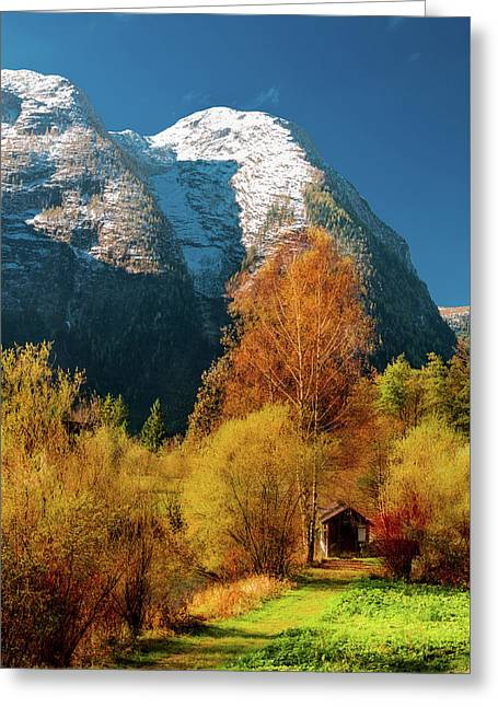 Greeting Card featuring the photograph Autumnal Gift by Geoff Smith