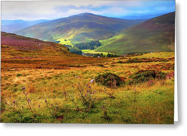 Greeting Card featuring the photograph Autumnal Hills. Wicklow. Ireland by Jenny Rainbow