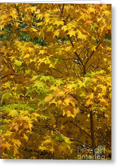Autumnal Leaves And Trees 1 Greeting Card by Jean Bernard Roussilhe