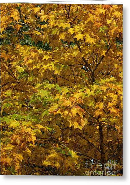 Autumnal Leaves And Trees 2 Greeting Card