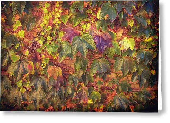 Autumnal Leaves Greeting Card