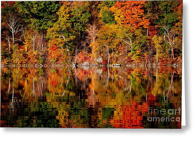 Autumnal Reflections Greeting Card by Andrea Simon