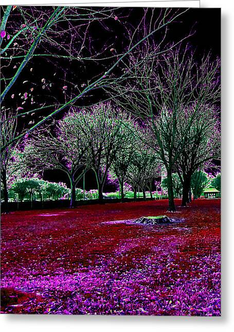 Autumnal Reversography Greeting Card