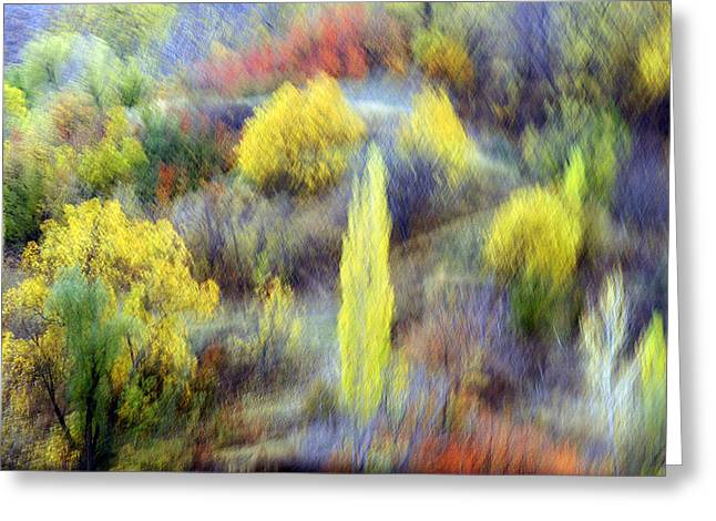 Autumnal Greeting Card by Robert Shahbazi