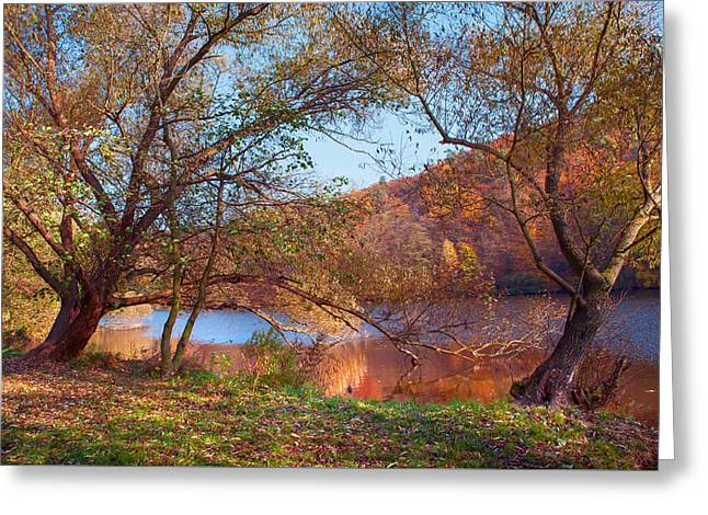 Autumnal Trees By The Lake Greeting Card by Jenny Rainbow