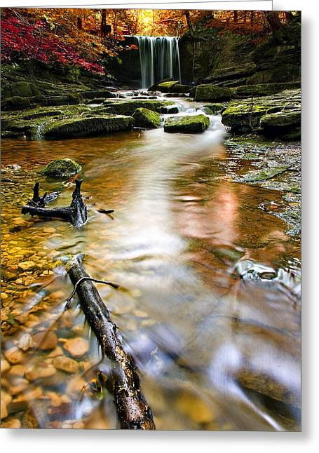 Beautiful Creek Greeting Cards - Autumnal Waterfall Greeting Card by Meirion Matthias