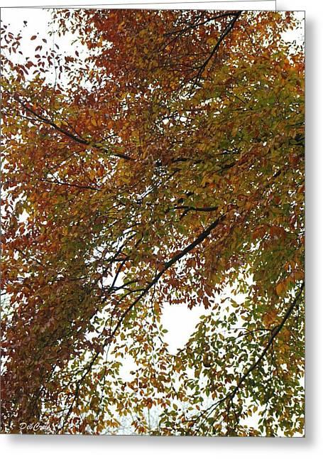 Autumn's Abstract Greeting Card by Deborah  Crew-Johnson