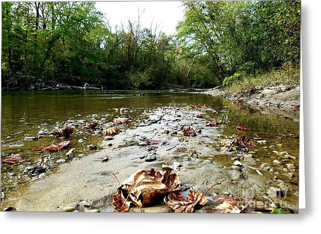 Autumns Arrival At The River Greeting Card by Scott D Van Osdol