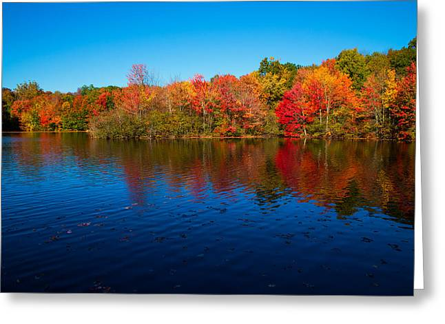 Autumns Colors Greeting Card by Karol Livote