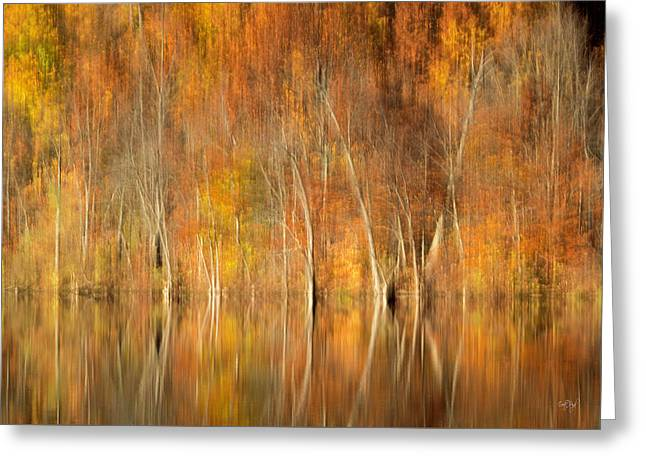 Greeting Card featuring the photograph Autumns Final Palette by Everet Regal