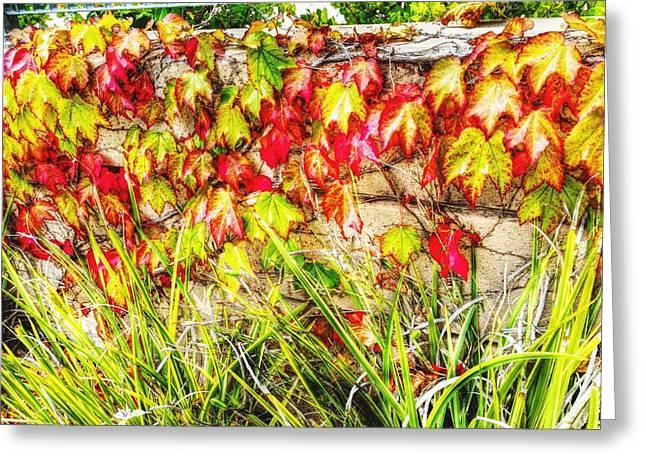 Autumn's Kiss Greeting Card