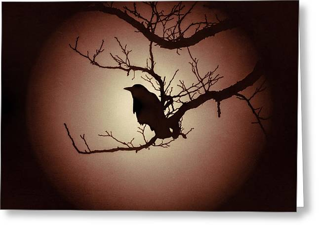 Autumn's Light Black Crow Silhouette Greeting Card by Terry DeLuco
