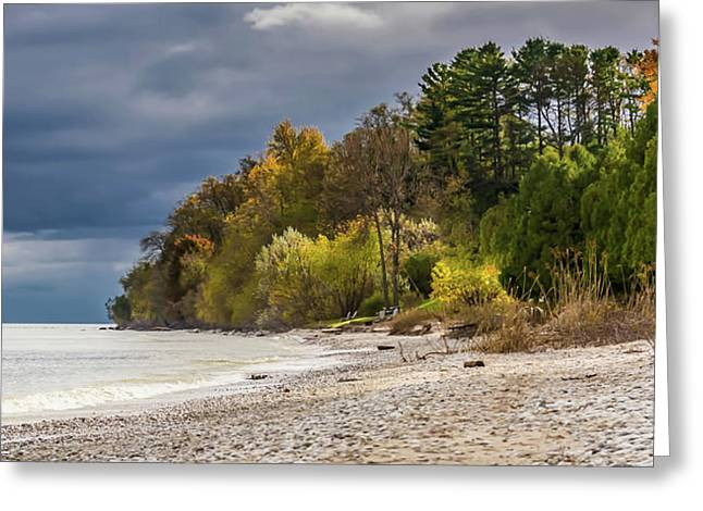 Autumn's Shoreline Greeting Card