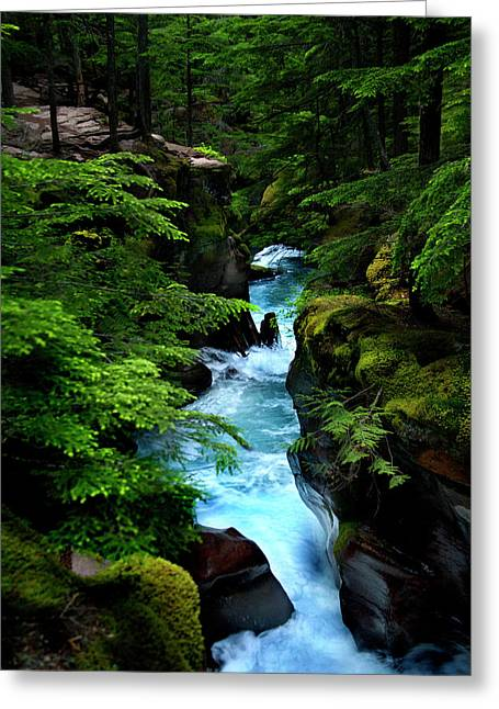 Avalanche Creek Waterfalls Greeting Card