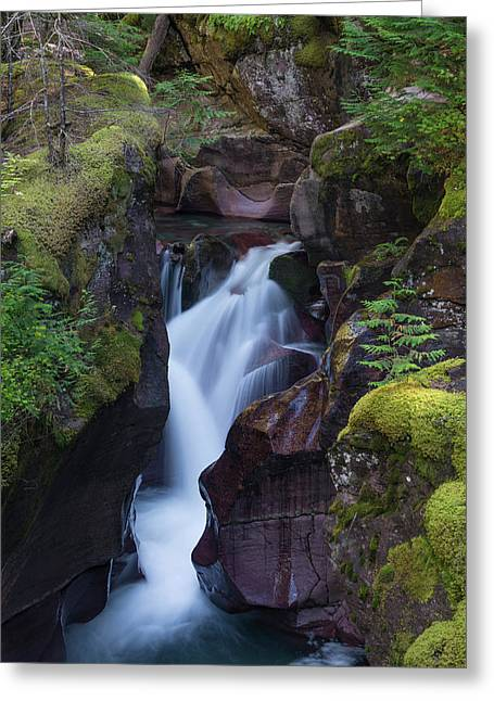 Avalanche Gorge 3 Greeting Card