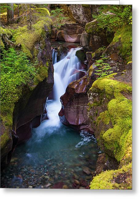 Greeting Card featuring the photograph Avalanche Gorge 4 by Gary Lengyel