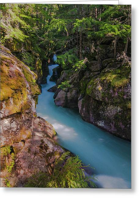 Greeting Card featuring the photograph Avalanche Gorge 5 by Gary Lengyel