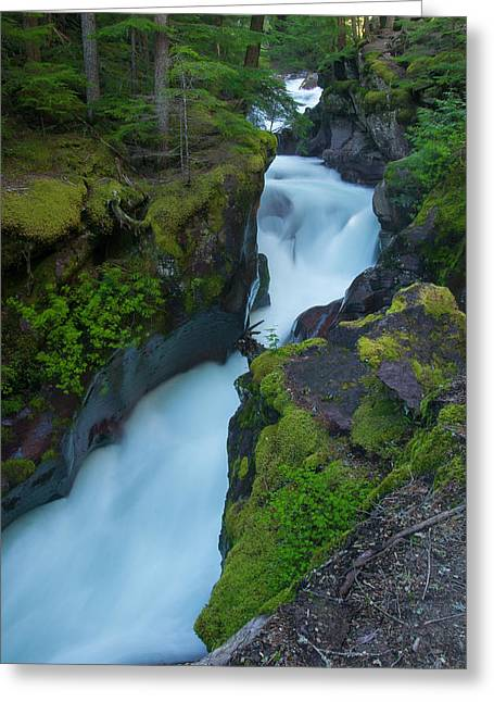 Greeting Card featuring the photograph Avalanche Gorge 6 by Gary Lengyel