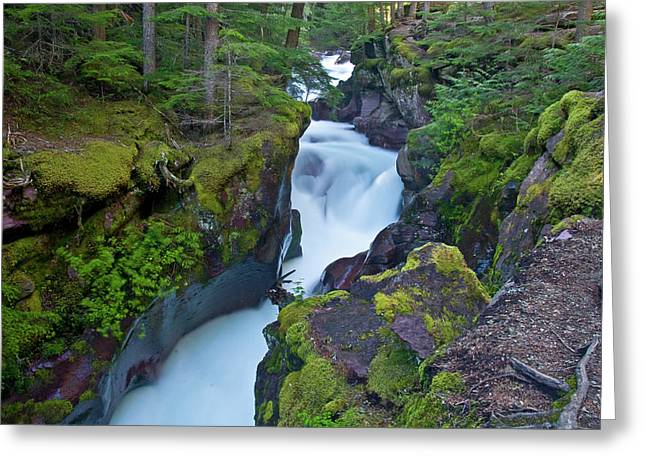 Greeting Card featuring the photograph Avalanche Gorge 7 by Gary Lengyel