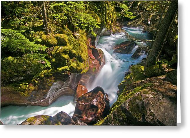 Greeting Card featuring the photograph Avalanche Gorge by Gary Lengyel
