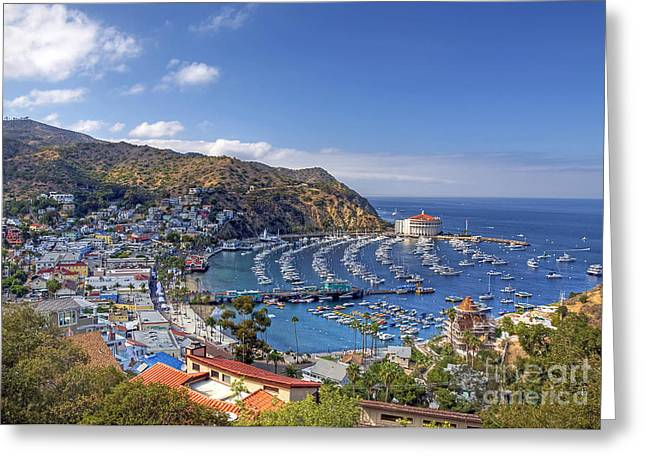 Shoreline Photographs Greeting Cards - Avalon Greeting Card by Eddie Yerkish