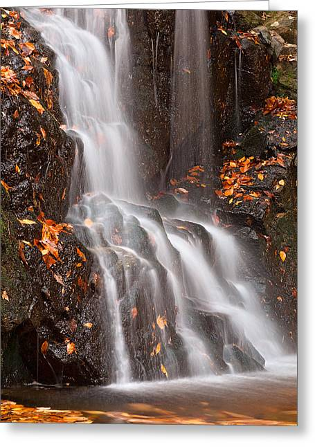 Avalon Falls Greeting Card