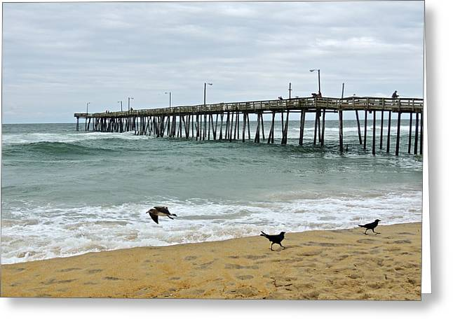 Avalon Fishing Pier Greeting Card by Eve Spring