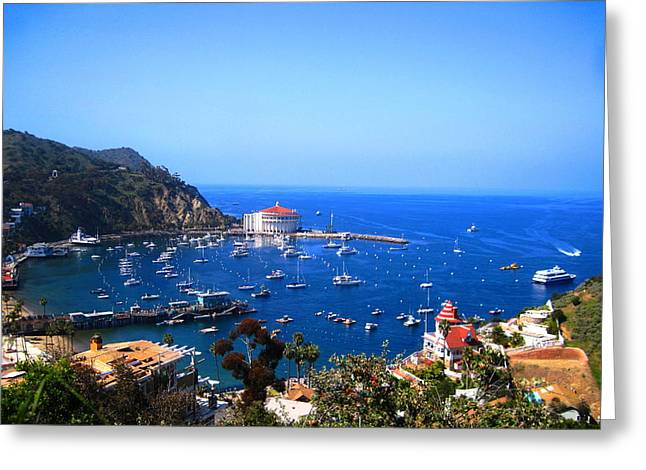 Avalon Harbor At Catalina Greeting Card by Catherine Natalia  Roche