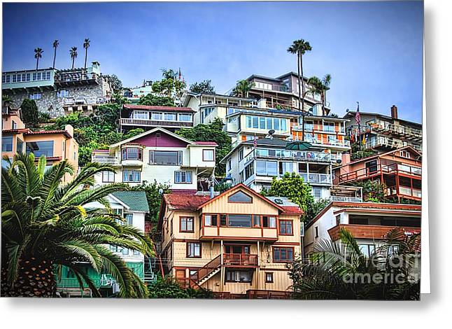 Avalon Hillside With Harbor View Greeting Card by Norma Warden