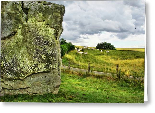 Avebury Standing Stone And Sheep Greeting Card