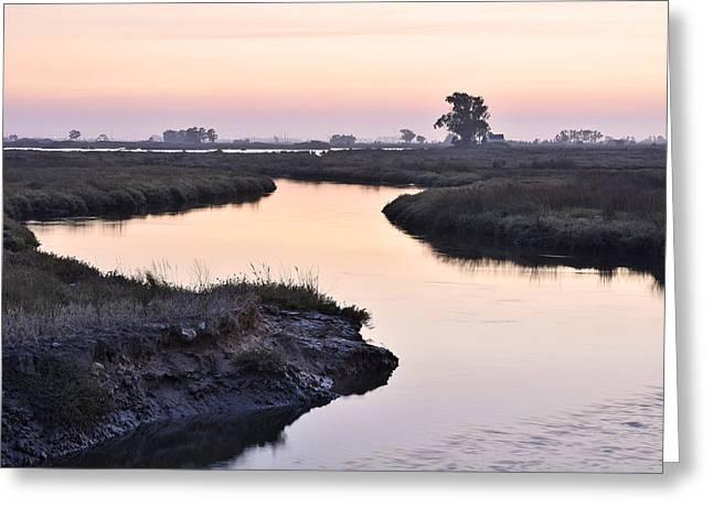 Aveiro Wetlands Greeting Card by Marek Stepan