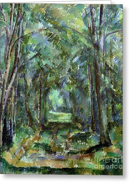 Tree Bark Greeting Cards - Avenue at Chantilly Greeting Card by Paul Cezanne