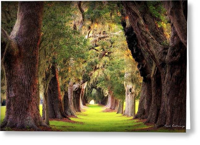 Greeting Card featuring the photograph Avenue Of Oaks Sea Island Golf Club St Simons Island Georgia Art by Reid Callaway