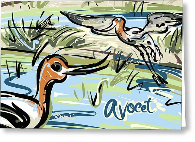 North Shore Drawings Greeting Cards - Avocet Greeting Card by Brett LaGue