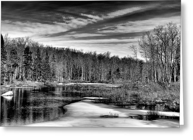 Awaiting Spring At The Creek Greeting Card