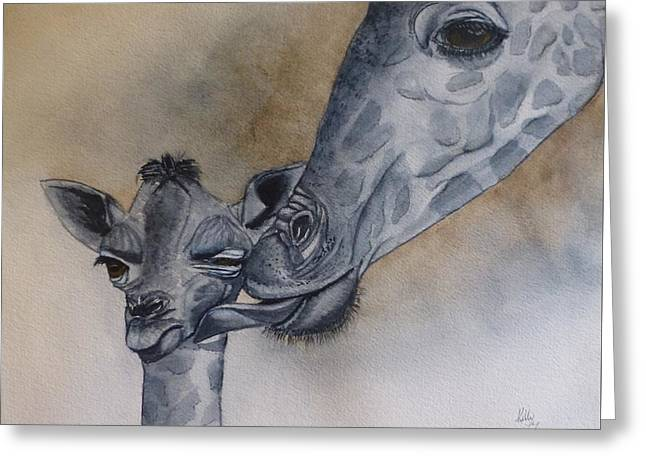 Baby And Mother Giraffe Greeting Card