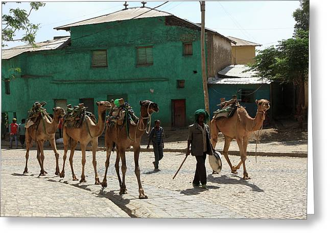 Axum, Ethiopia, East Africa Greeting Card by Aidan Moran