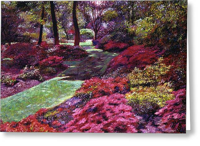 Azalea Park Greeting Card by David Lloyd Glover