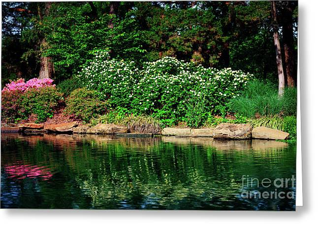 Azalea Reflection At Honor Heights Park Greeting Card by Tamyra Ayles