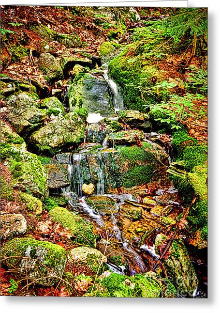 Babbling Brook Greeting Card by Olivier Le Queinec