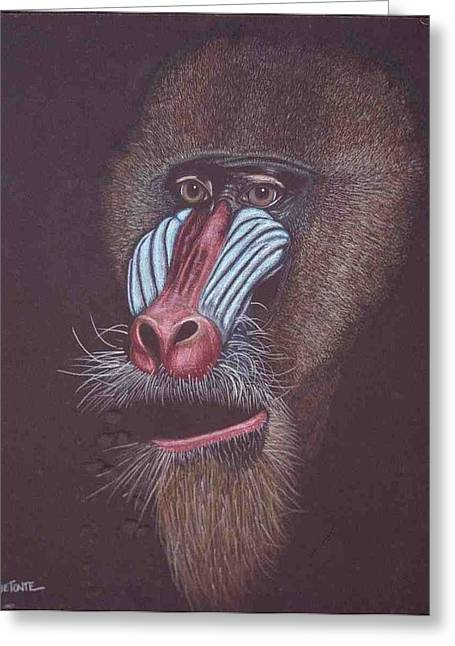 Baboon Greeting Card by Helen O Hara