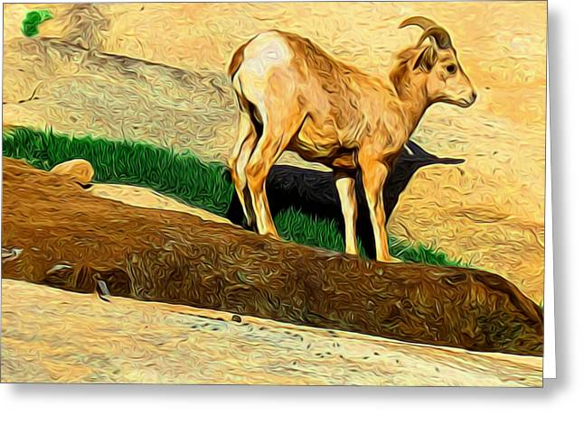 Baby Desert Bighorn In Abstract Greeting Card