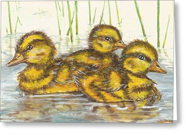 Baby Ducks For Ma Greeting Card
