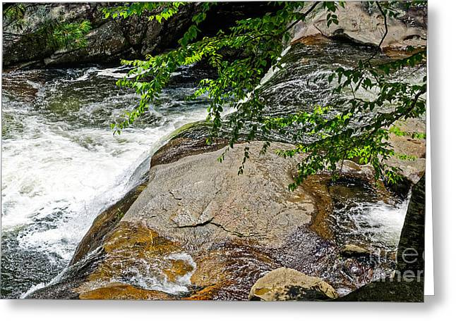 Tennessee River Greeting Cards - Baby Falls Greeting Card by Paul Mashburn